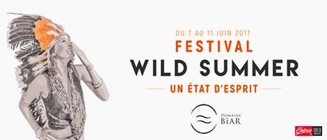 Évènement – Wild Summer festival 2017